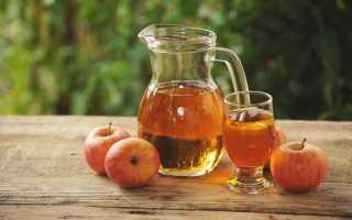 Рецепт яблочного сока
