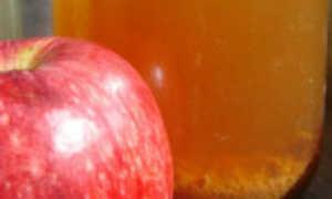 Как приготовить домашний яблочный уксус