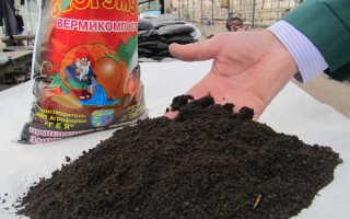 Как сделать вытяжку из биогумуса