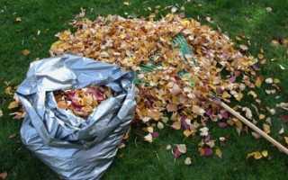 Использование опавших листьев