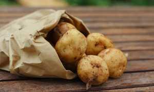 Красивые блюда из картошки
