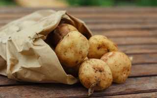 Что приготовить из картофеля быстро и вкусно