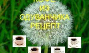 Кофе из корней одуванчика рецепт