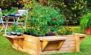 Мини огород на даче