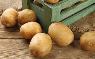 Как сохранить картошку без погреба