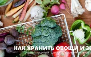 Где хранить овощи в квартире