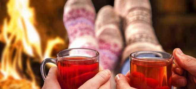 Ингредиенты для глинтвейна вино