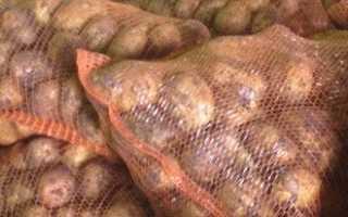 Урожай картофеля с 1 сотки