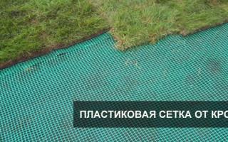 Защита газона от кротов