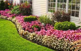 Как обустроить клумбу или цветник на даче