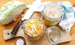 Рецепты маринования капусты быстрого приготовления