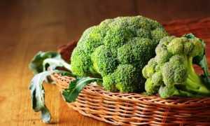 Брокколи выращивание и уход в подмосковье