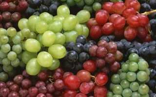 Виноград дерево