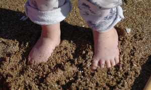 Расскажи какие бывают почвы