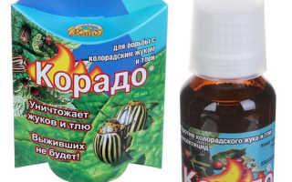 Органические препараты от колорадского жука