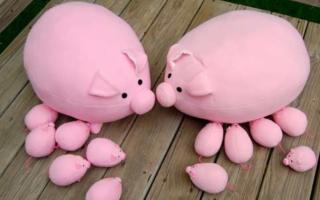 Как сделать свинку