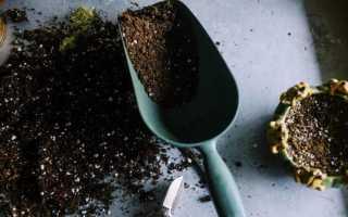 Слабощелочная почва
