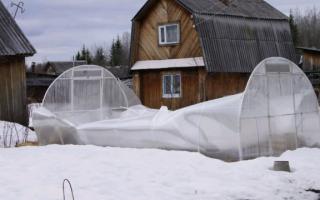 Как усилить теплицу из поликарбоната на зиму