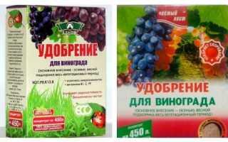 Обробка винограду восени