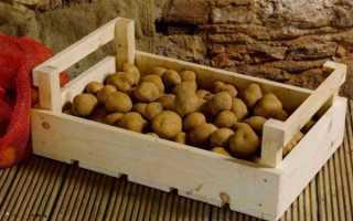 Можно ли хранить картошку на балконе