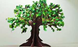Крона дерева шаблон