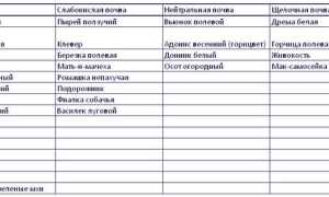 Раскислители почвы нормы и сроки внесения