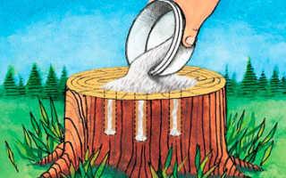 Как уничтожить пень от спиленного дерева