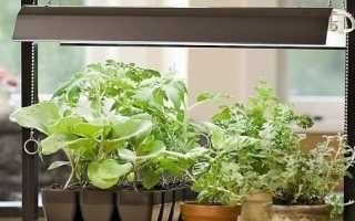 Освещение растений светодиодными лампами