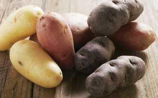 Виды картошки