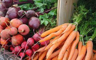 Как сохранить морковь и свеклу на зиму