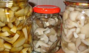 Как подавать маринованные грибы